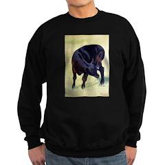 Black Angus Calf Sweatshirt (dark)
