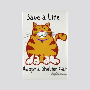 Shelter Cat Rectangle Magnet