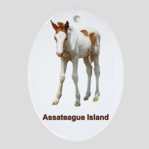 Assateague Island Foal Oval Ornament