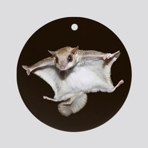Flying Squirrel Ornament (Round)