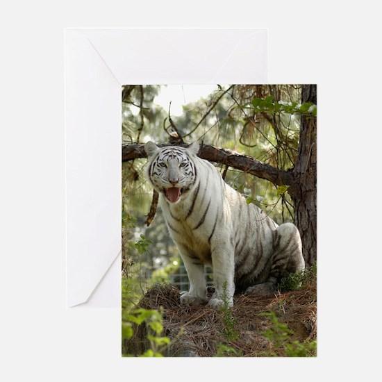 Zabu, White Tiger Greeting Card