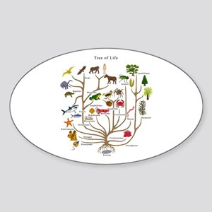 Tree of Life Oval Sticker