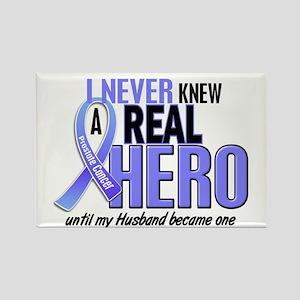 Never Knew A Hero 2 LT BLUE (Husband) Rectangle Ma