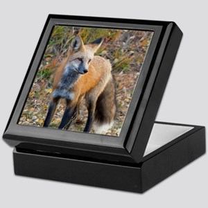 Keepsake Box - Red Fox