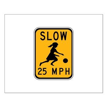 Slow 25 MPH Small Poster