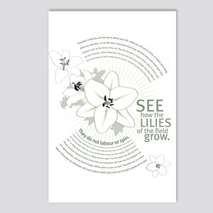 Lilies of The Field: Postcards (Package of 8)