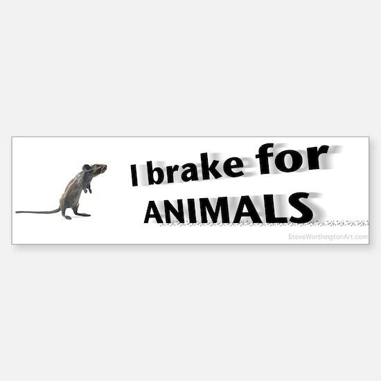 I brake for animals Bumper Bumper Bumper Bumper Sticker