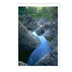 Dead Horse Creek Postcards (Package of 8)