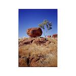 Balance: Devils Marble Rectangle Magnet (100 pack)