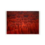 Bryce Canyon Flames Rectangle Magnet (100 pack)