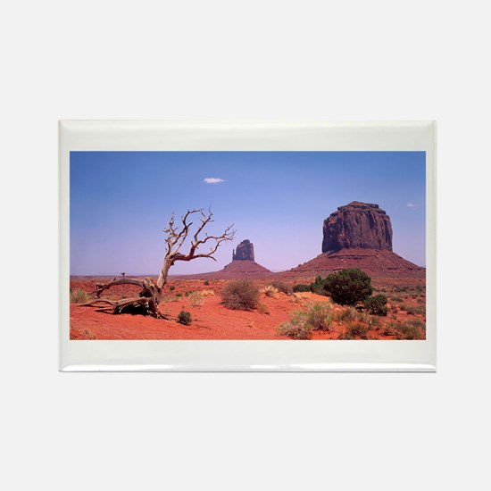 Monument Valley Struggle Rectangle Magnet