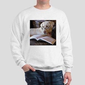 Studious Lab Sweatshirt