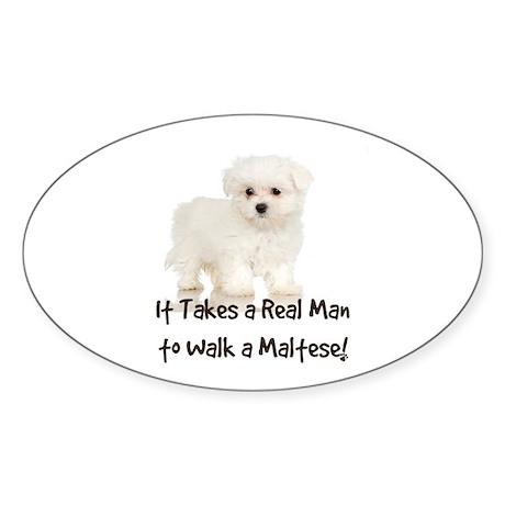 Real Men Walk Maltese Oval Sticker