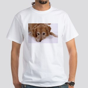 Winter Golden Retriever White T-Shirt