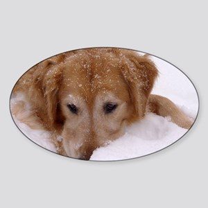 Winter Golden Retriever Oval Sticker