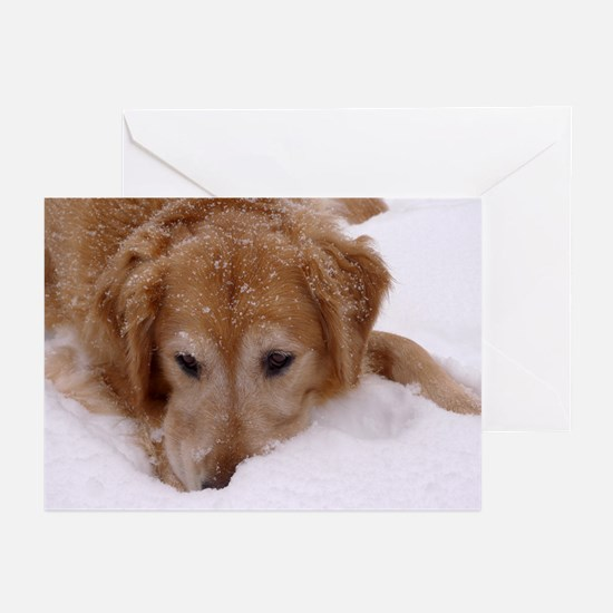 Winter Golden Retriever Greeting Cards (Pk of 10)