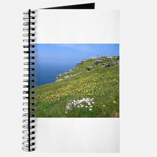 Tintagel Journal