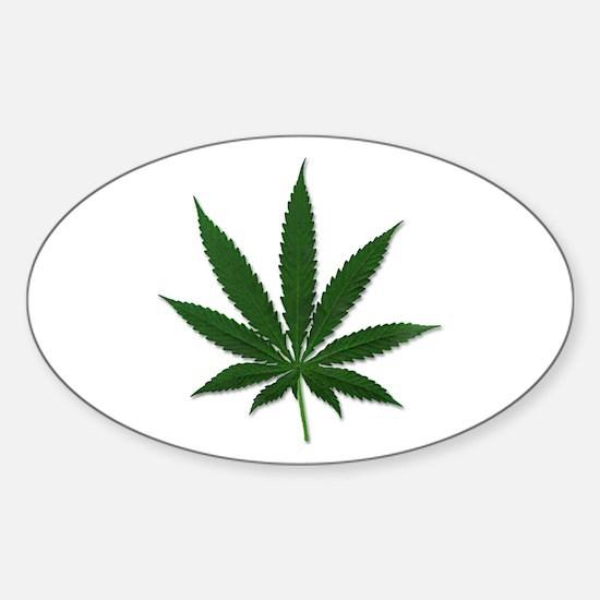 Marijuana Pot Leaf Oval Decal