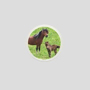 Mini Pinto Stallion & Daughte Mini Button