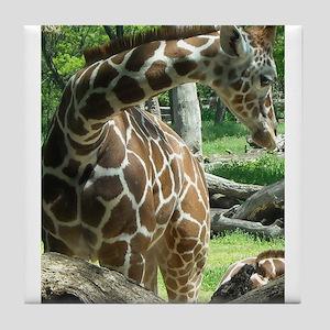 Beautiful Giraffe Tile Coaster