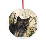 Bobcat in Brush Ornament (Round)