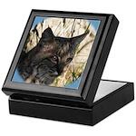 Bobcat in Brush Keepsake Box