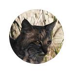 Bobcat in Brush 3.5