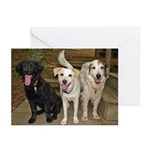 threetonguers Greeting Cards
