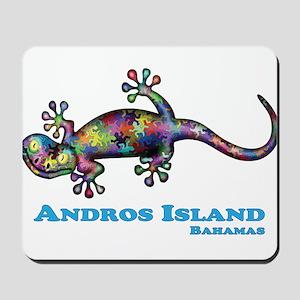 Andros Island Bahamas Gecko Mousepad