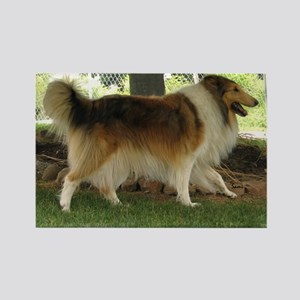 Lassie the Collie Rectangle Magnet