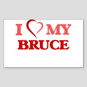 I love my Bruce Sticker