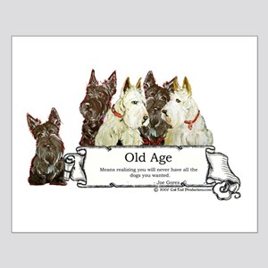 Old Age Scottish Terriers Small Poster