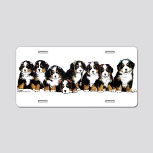 Bernese Mountain Dogs Aluminum License Plate