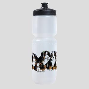 Bernese Mountain Dogs Sports Bottle