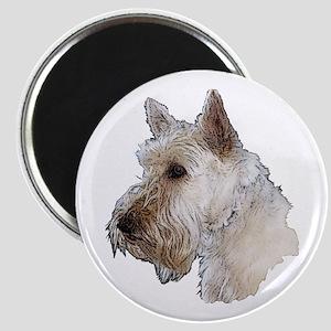 Scottish Terrier (Wheaten) Magnet