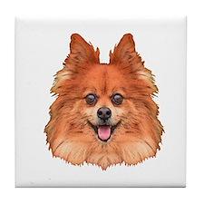 Pomeranian Tile Coaster
