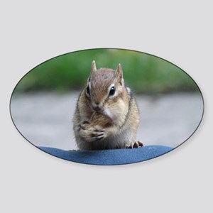 Chipmunk Oval Sticker