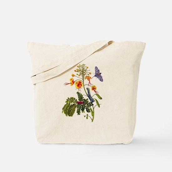 Maria Sibylla Merian IX Tote Bag