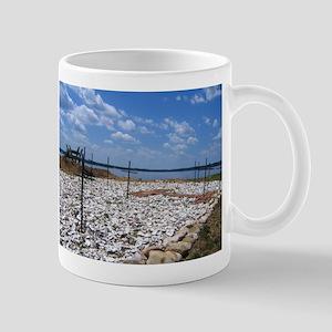 Jamestown, Virginia Mug