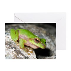 Cascade Treefrog Greeting Cards (Pk of 10)