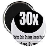 30x Marina Express (Classic) Magnet