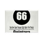 66 Quintara (Classic) Rectangle Magnet (100 pack)