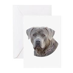 Cane Corso Greeting Cards (Pk of 10)