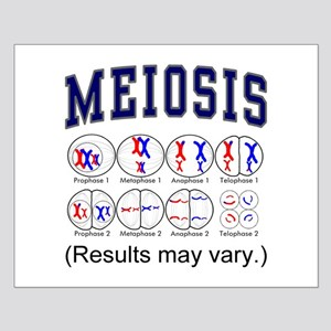 Meiois Small Poster