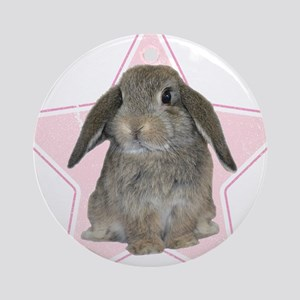 Baby bunny (pink) Ornament (Round)