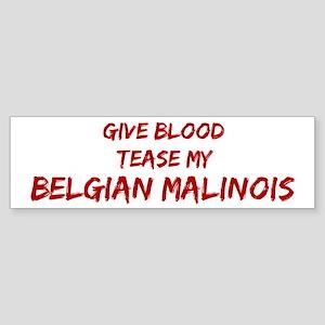 Tease aBelgian Malinois Bumper Sticker