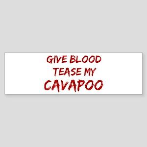 Tease aCavapoo Bumper Sticker