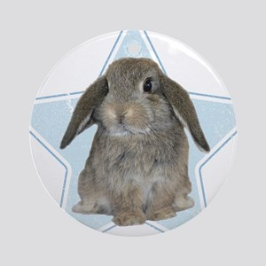 Baby bunny (blue) Ornament (Round)
