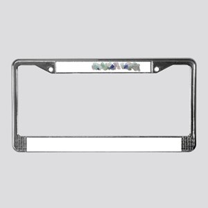 Beach Glass License Plate Frame