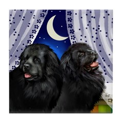 Newfoundland Dogs Window Tile Coaster